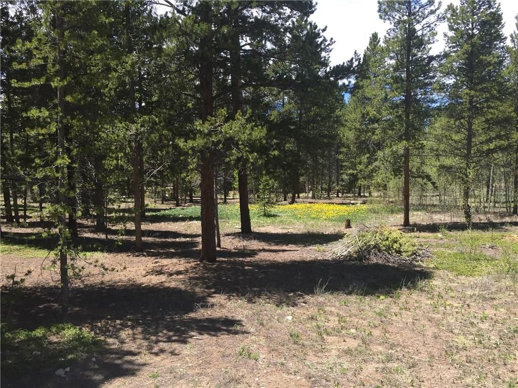 1668 Four Seasons BOULEVARD LEADVILLE, Colorado 80461