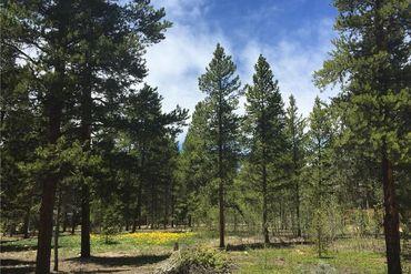 1668 Four Seasons BOULEVARD LEADVILLE, Colorado - Image 6