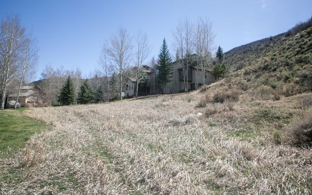 201 Aspen Meadow Drive - photo 3