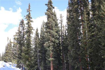 714 SILVERHEELS PLACE FAIRPLAY, Colorado - Image 11