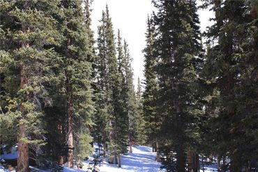714 SILVERHEELS PLACE FAIRPLAY, Colorado - Image 14
