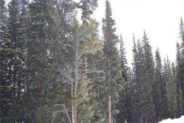 714 SILVERHEELS PLACE FAIRPLAY, Colorado - Image 18