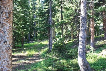 714 SILVERHEELS PLACE FAIRPLAY, Colorado - Image 7