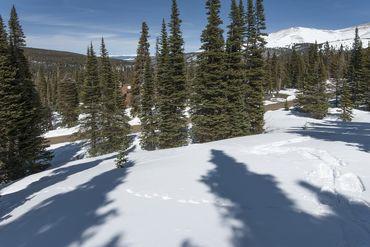 325 Quandary View DRIVE BRECKENRIDGE, Colorado - Image 16