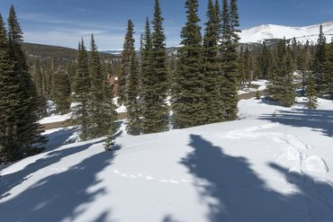 325 Quandary View DRIVE BRECKENRIDGE, Colorado - Image 16