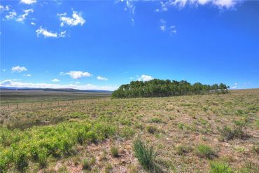 Lot 13 CTY Road 18 ROAD FAIRPLAY, Colorado - Image 4