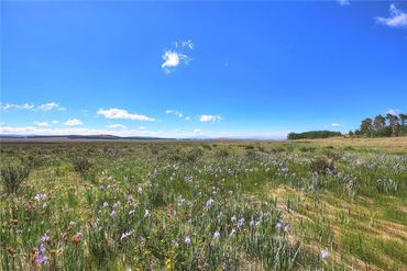 Lot 13 CTY Road 18 ROAD FAIRPLAY, Colorado - Image 10