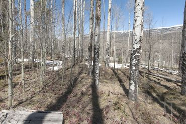 1325 Golden Eagle ROAD SILVERTHORNE, Colorado - Image 20
