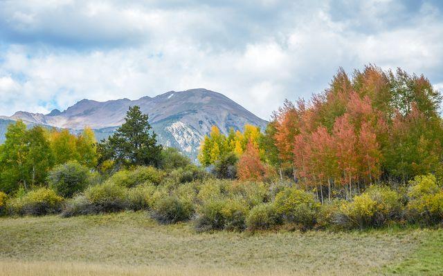 1325 Golden Eagle Road - photo 21