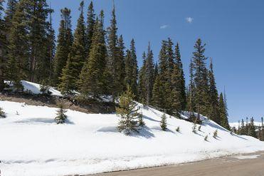 155 Quandary View DRIVE BRECKENRIDGE, Colorado 80424 - Image 1