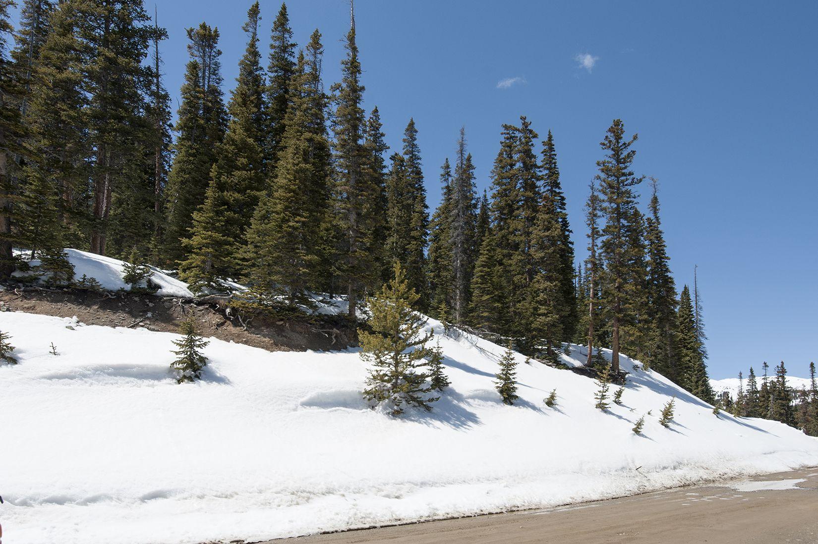 155 Quandary View DRIVE BRECKENRIDGE, Colorado 80424