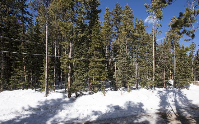 0122 Slalom Drive - photo 10