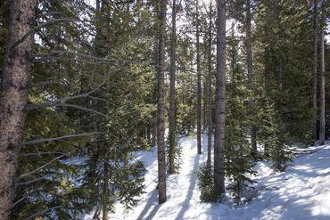 0122 SLALOM DRIVE BRECKENRIDGE, Colorado - Image 5