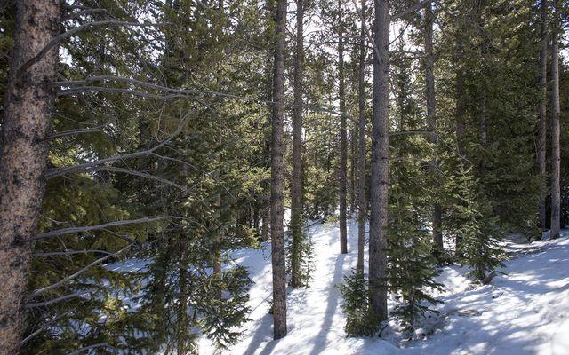 0122 Slalom Drive - photo 4