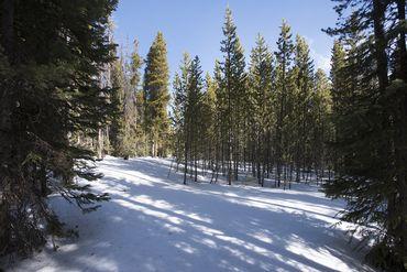 Photo of 0122 SLALOM DRIVE BRECKENRIDGE, Colorado 80425 - Image 8