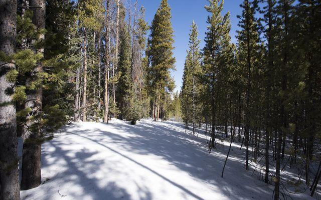 0122 Slalom Drive - photo 8