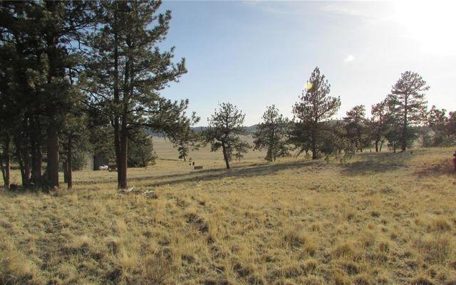 2230 Arapahoe TRAIL HARTSEL, Colorado 80449