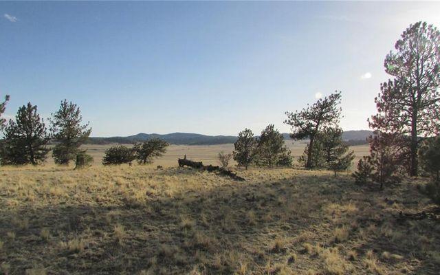 TBD Arapahoe TRAIL HARTSEL, Colorado 80449