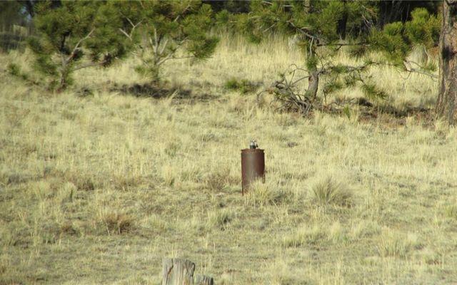 Tbd Arapahoe Trail - photo 15