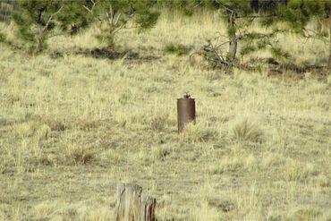 TBD Arapahoe TRAIL HARTSEL, Colorado - Image 17