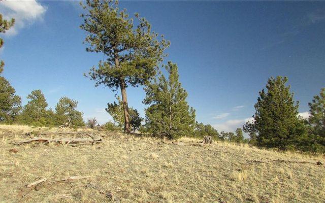 Tbd Arapahoe Trail - photo 3