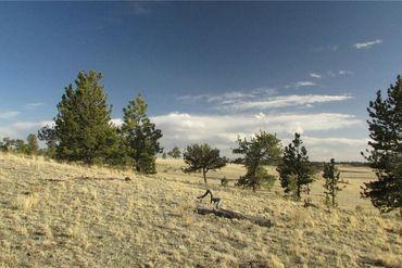 TBD Arapahoe TRAIL HARTSEL, Colorado - Image 5