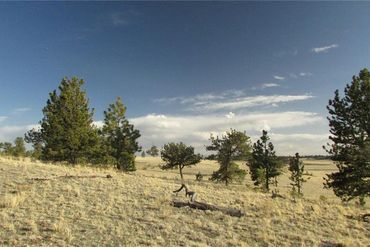TBD Arapahoe TRAIL HARTSEL, Colorado - Image 6