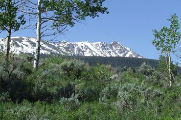 445 Cataract Creek ROAD SILVERTHORNE, Colorado - Image 1