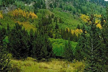 0 CO RD 12 ALMA, Colorado - Image 10