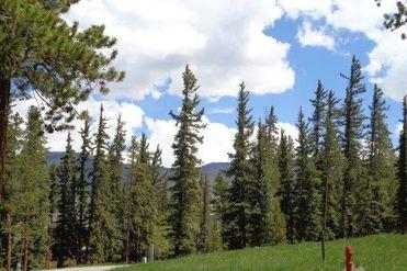 756 Penstemon ROAD KEYSTONE, Colorado 80435 - Image 1