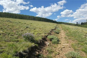1215 BREAKNECK PASS COURT FAIRPLAY, Colorado - Image 23