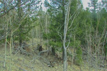 1051 CARACARA LANE COMO, Colorado - Image 16