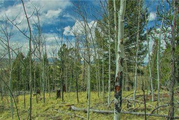 1051 CARACARA LANE COMO, Colorado - Image 7