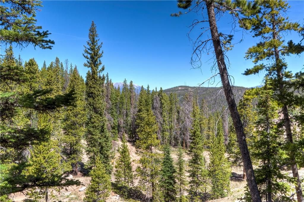 0 Baldy ROAD BRECKENRIDGE, Colorado 80424
