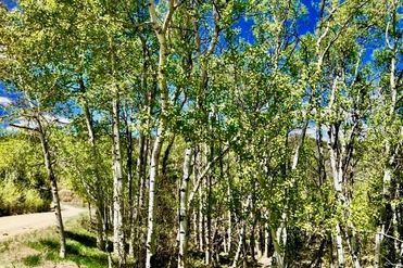 1743 Clairs Run PARSHALL, Colorado 80468 - Image 1