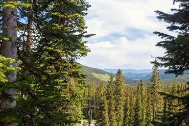 474 Cnty Rd 672 BRECKENRIDGE, Colorado - Image 1