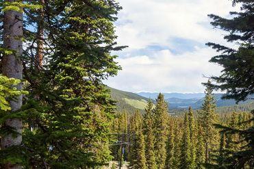 474 Cnty Rd 672 BRECKENRIDGE, Colorado 80424 - Image 1