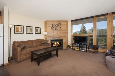 95200 Ryan Gulch ROAD # B213 SILVERTHORNE, Colorado 80498 - Image 1