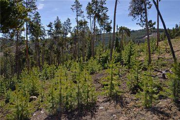 1290 Discovery Hill DRIVE BRECKENRIDGE, Colorado - Image 5