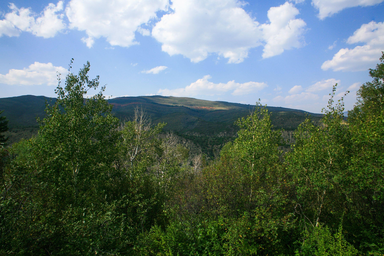419 Redtail Ridge Edwards, CO 81632