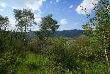 419 Redtail Ridge Edwards, CO - Image 5