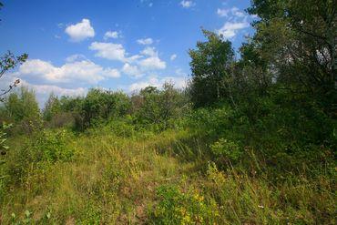 419 Redtail Ridge Edwards, CO - Image 6