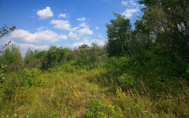 419 Redtail Ridge - photo 5