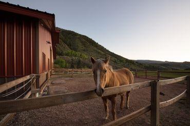 Photo of 2547 Salt Creek Road Eagle, CO 81631 - Image 24