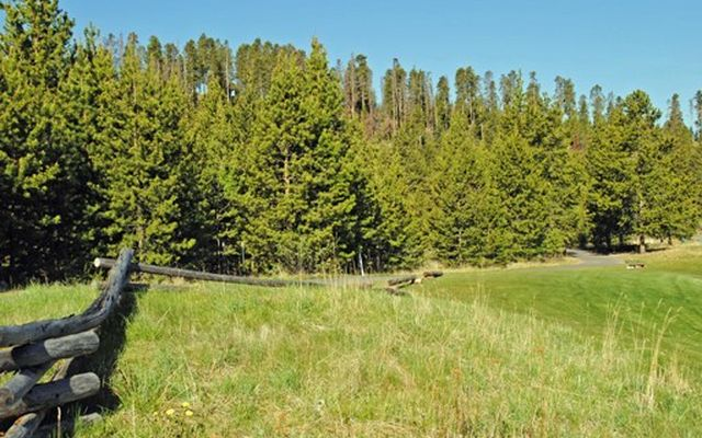 231 Elk Circle - photo 11