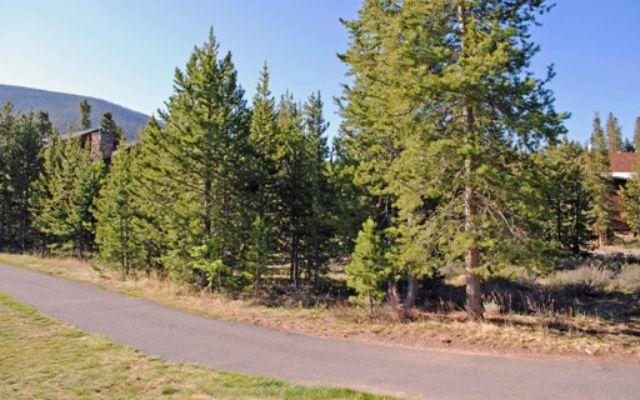 231 Elk Circle - photo 8