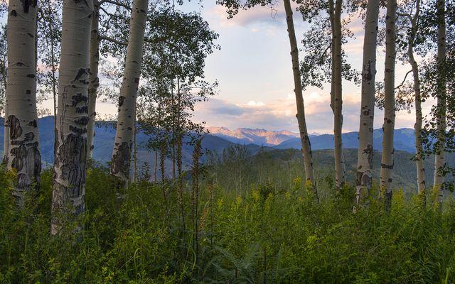 2201 Daybreak Ridge - photo 39
