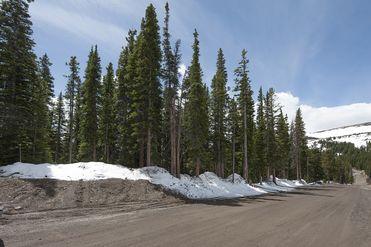334 Camron LANE BRECKENRIDGE, Colorado 80424 - Image 1