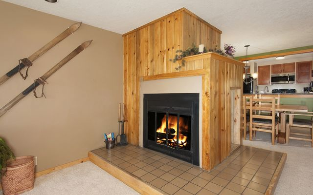 Pines At Keystone Condo # 2048 - photo 2