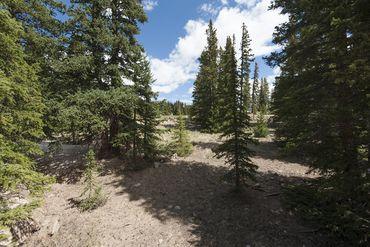 55 RONS ROAD ALMA, Colorado - Image 6